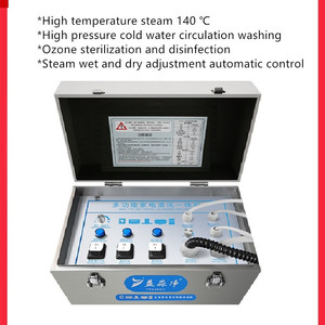 220V Electric Steaming Cleaner