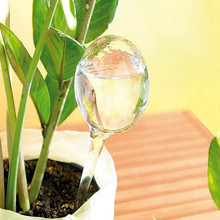 Watering-Bulbs Globes Garden-Water-Device Plant Plastic Automatic for 12pcs Balls