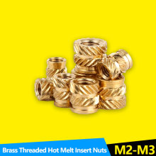Heat Set Insert Nuts Embed Parts Female Thread Brass Knurled Inserts Nut Pressed Fit into Holes for 3D Printing M2 M2.5M3 100Pcs