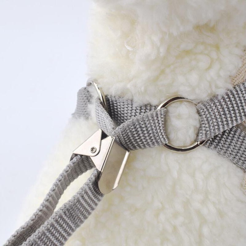 Adjustable Dogs Vest Leashes Set Walking Runing Bow Breathable Mesh Pet Harness For Dogs Chihuahua Korean Style Pet Nylon Leads