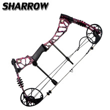 цена на KaiMei220 Archery Compound Bow 40-60lbs Adjustable Hunting Bow Right Hand Outdoor Fishing Shooting Game Accessroies