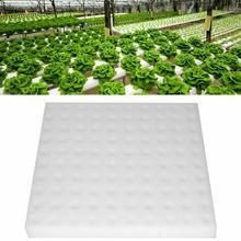 1 шт. гидропонная губка для садоводства инструмент для рассады губки для теплицы Soilless растительная система