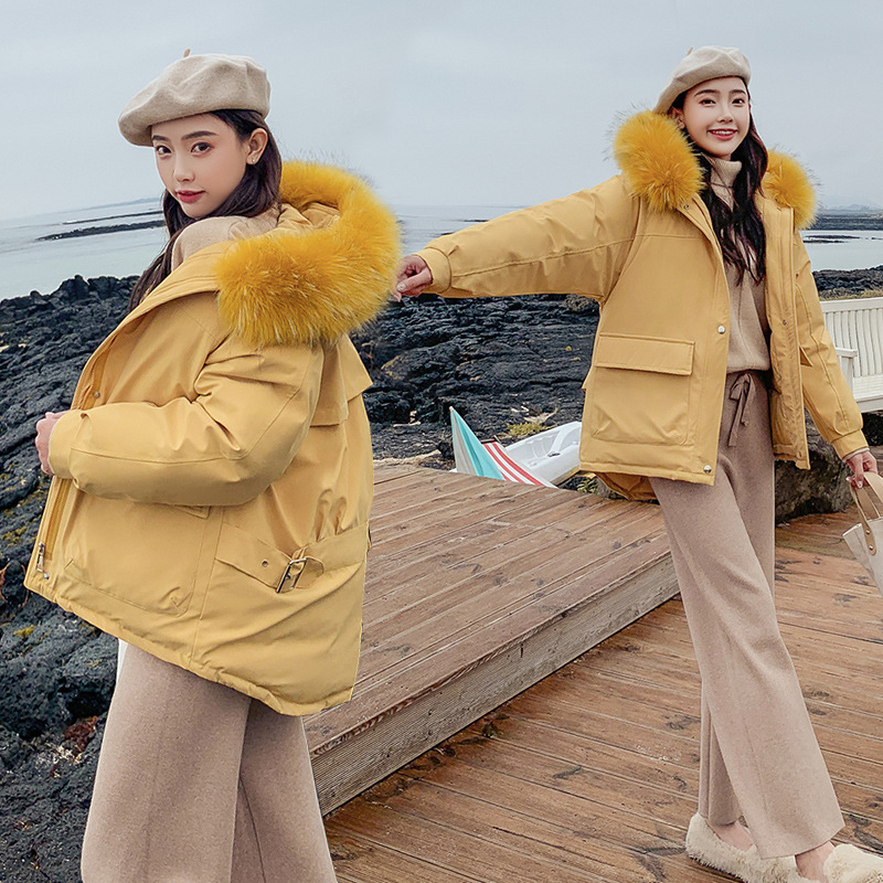 2019 women winter hooded warm coat plus size cotton padded jacket female long   parka   womens wadded MYLY27