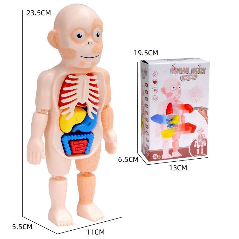 cheap biologia 05