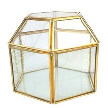 Faceted Hexagonal Clear Glass & Brass-Tone Metal Hinged Top Lid Terrarium Box/Tabletop Display Jewerly Box