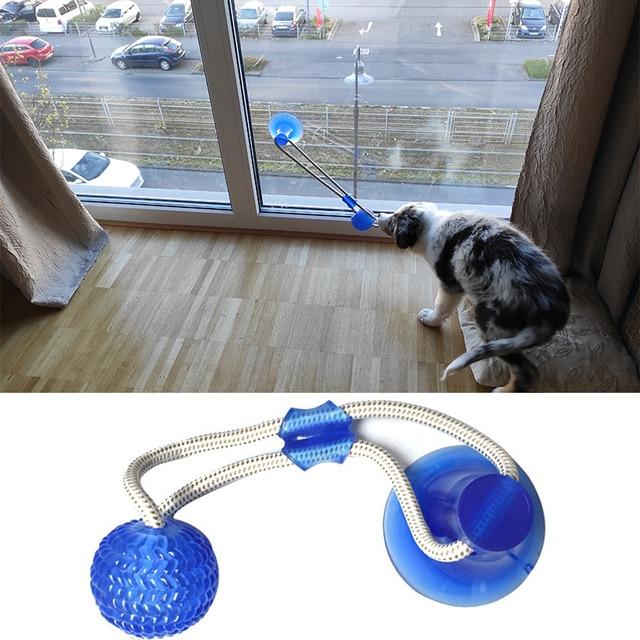 Brinquedos para cães de estimação filhote de cachorro interativo ventosa empurrar tpr bola brinquedos molar mordida brinquedo cordas elásticas limpeza do dente do cão suprimentos de mastigação 2