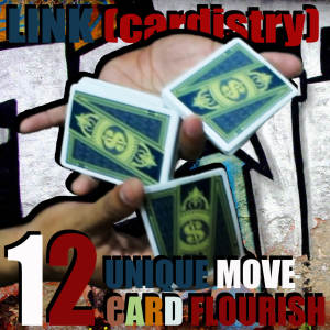 LINK (cardistry project) by SaysevenT,Magic Tricks