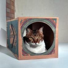 Ball Tunnel-Toys Paper Pet-Products Corrugated Cat Kitten Small Foldable Collapsible