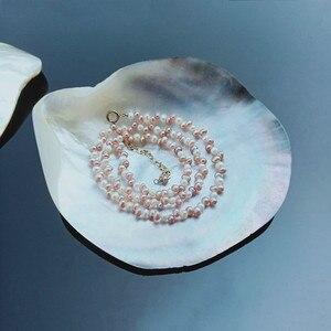 Natural Seashells Black Butterfly Shell Jewelry DIY Shell Nautical Beach Decor Scallop Specimen Restaurant Caviar Seasoning Tray