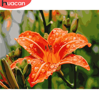 HUACAN DIY Lily Pictures By Number Kits Home Decor Flower Painting By Numbers Drawing On Canvas HandPainted Art Gift