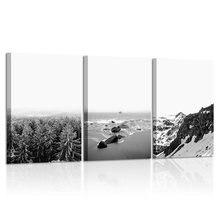 Черно белые принты настенная живопись скандинавский лес настенный