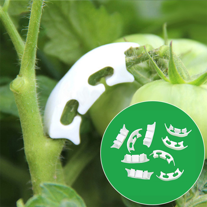 50pcs Botany-stem Vine Strapping Clips Garden Plant Bundled Buckle Ring Tool Fasten Stand Holder Tomato Flowers Fixed Suppor