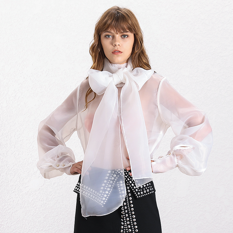 H72031088f46e4156a58e4bc0d30181abq - TWOTWINSTYLE Elegant Perspective Womens Tops And Blouses Lantern Sleeve Lace Up Plus Size Shirts Female Autumn Fashion New