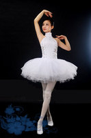 adult Ballet Dress Praise Dance Dresses Gymnastics Leotard for Girls Leotard with Skirt for Lyrical Dress Celebration of Sp