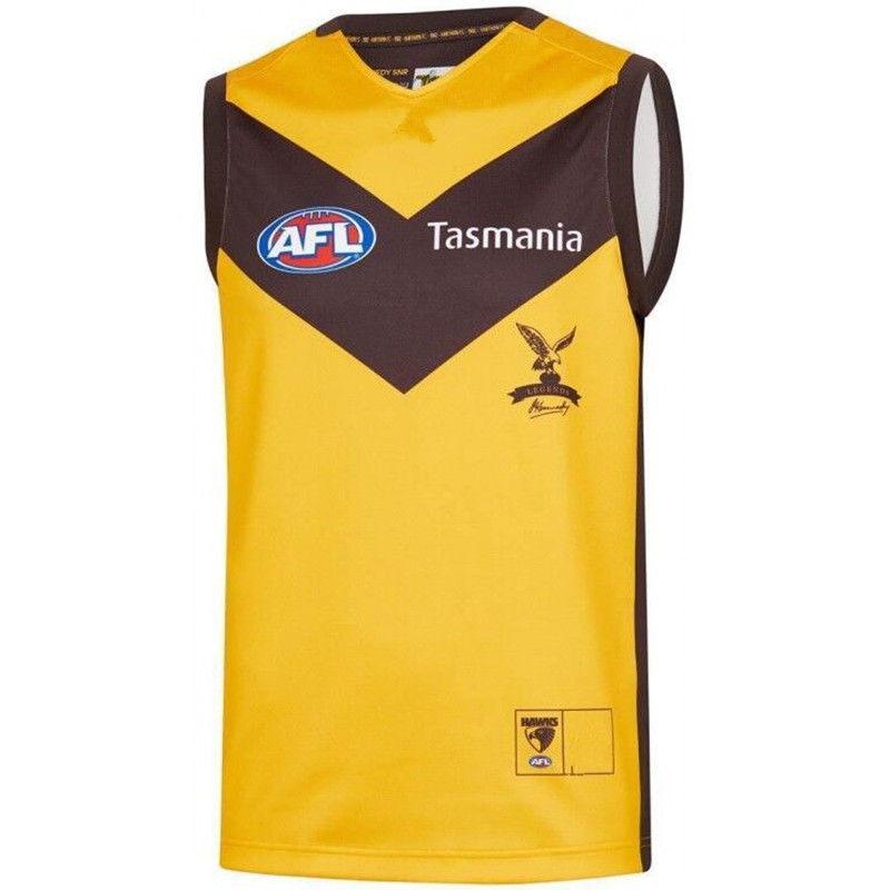 AFL HAWTHORN HAWKS 2019 MEN'S HOME JERSEY size S-3XL Print custom names and numbers Top quality Free shipping(China)
