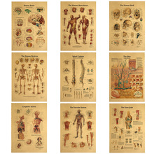 Vintage Poster Painting Wall-Stickers Skeleton-Nervous-System Decoracion Kraft Medical