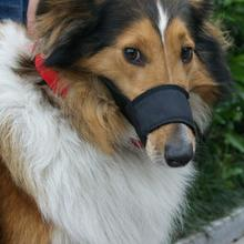 Собака Щенок Корректируемый дышащий безопасности рот Морда Анти намордник против лая, укусов маска