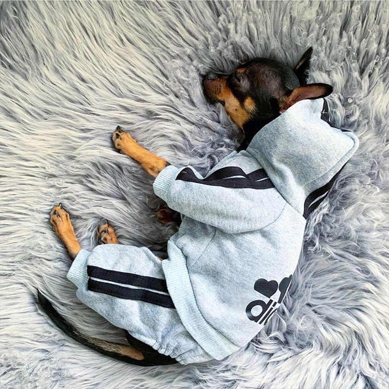 Vestiti dell'animale domestico Francese Bulldog Cucciolo di Cane Costume Pet Tuta Chihuahua Pug Animali Cani Abbigliamento per Cani di Piccola Taglia Media Vestito Cucciolo