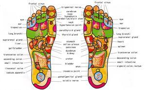 Image 5 - 5 Ruwe Houten Voet Roller Wood Care Massage Reflexologie Relax Relief Massager Spa Gift Anti Cellulite Voet Massager Voetverzorging