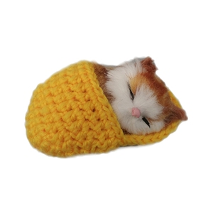 Cute Star Sleeping Cat In Slipper Doll Toy Mini Kitten In Shoe With Meows Sounds Decor Ornament Hand Toy Gift Kids Boys Girls