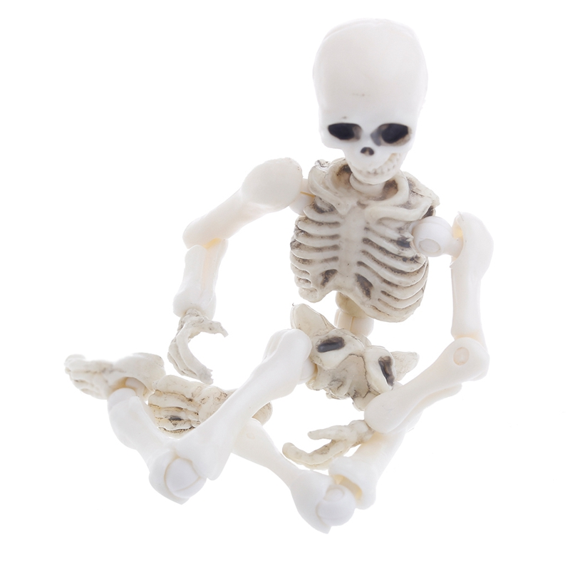 Movable Mr. Bones Skeleton Human Model Skull Full Body Mini Figure Toy Halloween DXAD