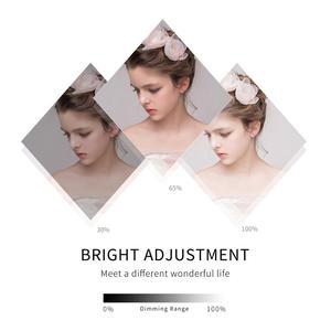 Image 4 - Chụp Ảnh Đèn LED Đính Hạt Softbox Bộ Đèn Kit 2 Màu Ánh Sáng Liên Tục Mềm Hộp 45W Hệ Thống Phụ Kiện Chụp Ảnh Phòng Thu video