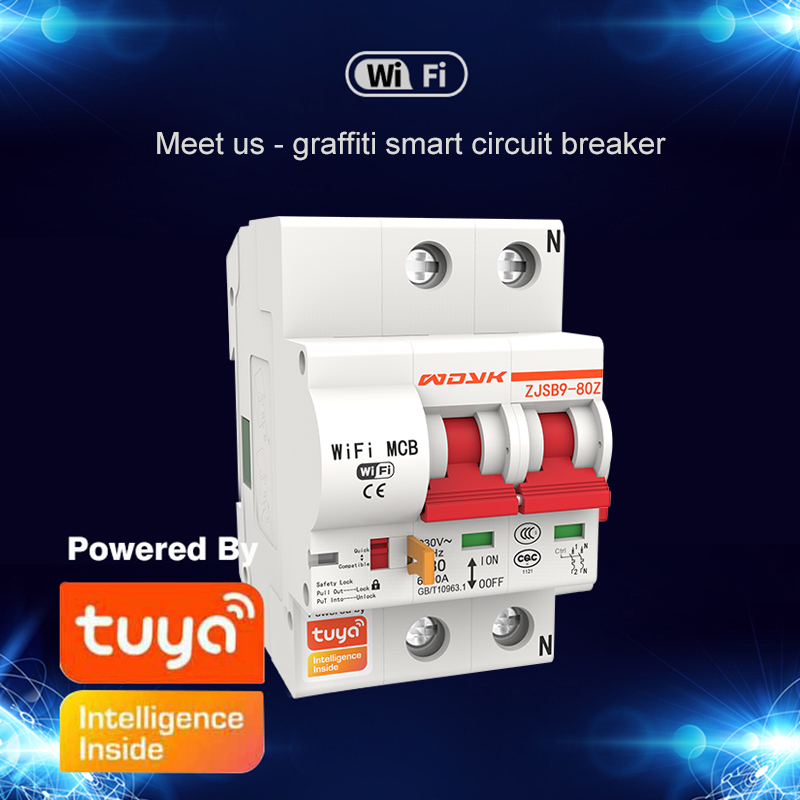 Tuya App 2P Smart WIFI Circuit Breaker Automatic Switch Overload Short Circuit Protection With Amazon Alexa Google Home