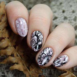 Image 3 - Urodzony dość tekstury paznokci tłoczenia płyty Leopard jesień prostokąt temat paznokci artystyczny obraz wydruku tłoczenia szablon liści wzornik