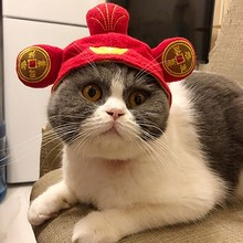 Halloween Funny Pet Dog Caps Lion Hair Mane Ears Head Cap Party Cosplay Dress Up Hat Cat Puppy Teddy Wear AccessoriesGM