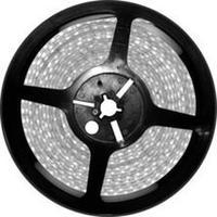 5 m 24VDC 24 W 4 8 W/m Tira CONDUZIDA Luz Cálida 3000 K Ip65 Led Smd3528 255035|Luzes de publicidade|   -