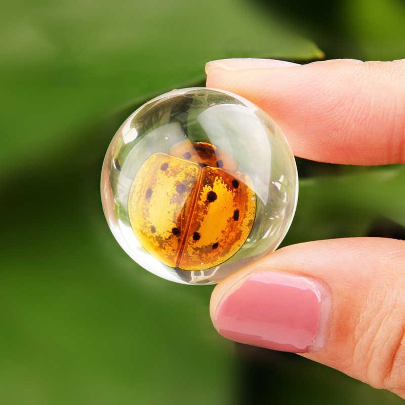 ของเล่นการเรียนรู้เด็กจริงตัวอย่างแมลง CLEAR สีเหลืองอำพัน Early การศึกษาเครื่องมือของเล่นเด็กโรงเรียนการสอน Home Decor