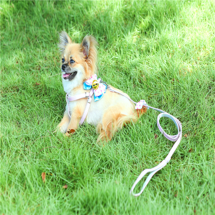 Pet Traction Rope Dog New Style Pu Book Bow Pull Chest Pet Supplies Hand Holding Rope