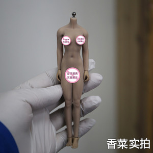 """Image 3 - Dropshipping 1/12หญิงเซ็กซี่Seamless BodyหัวSculpt SuntanผิวTBLeague PHMB2018 T01 6 """"รูปตุ๊กตาตุ๊กตา"""
