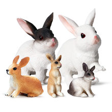 Models, Rabbit,Enlightenment Toys, Furnishings, Children's Gifts, Wild Animals, Knowledge Science,Home Entertainment