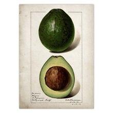 Знак рынка свежих фруктов авокадо металлический жестяной знак