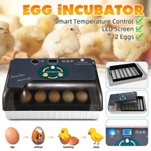 Full Automatic Incubator Brooder Farm Hatchery Machine 12 Egg Hatcher Chicken Automatic Egg Incubator Goose Bird Quail Brooder