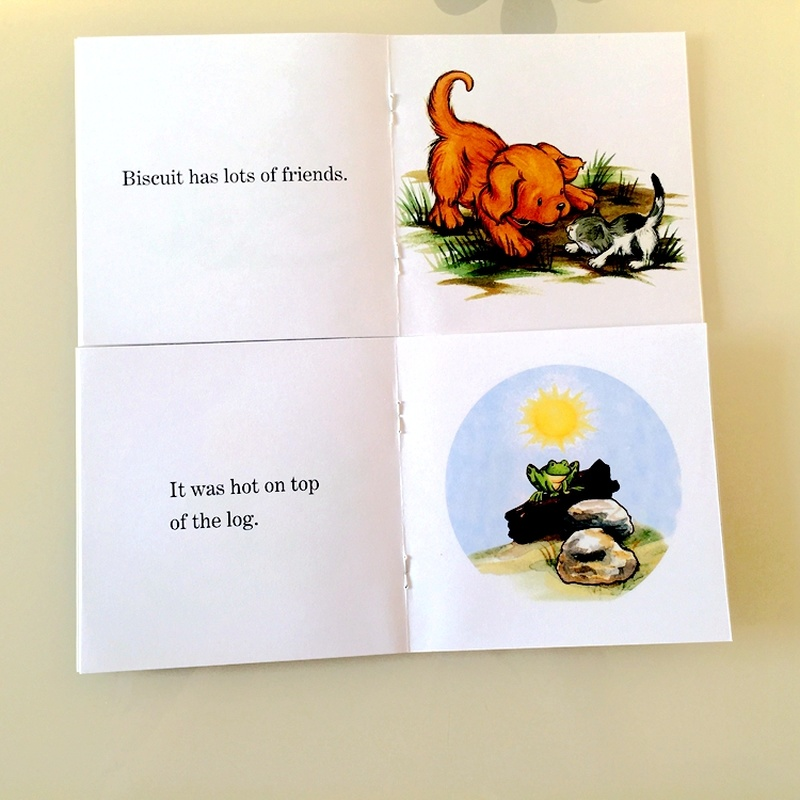 12 Books Biscuit Series Phonics English Picture libros   6