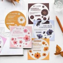 Бумага мистер ПВХ Стикер Цветы Арт серия креативный pda дневник