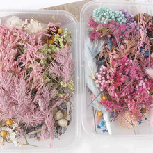 1 Box Colorful Real Dried Flower Plant For Aromatherapy Candle Epoxy Resin Pendant Necklace Jewelry Making DIY Craft Accessories