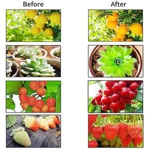 Image 5 - ออกแบบใหม่ LED พืชเติบโตโคมไฟหรี่แสงได้ 1000 วัตต์ COB full Spectrum fitolampy สำหรับในร่มปลูกผักดอกไม้ phyto โคมไฟ