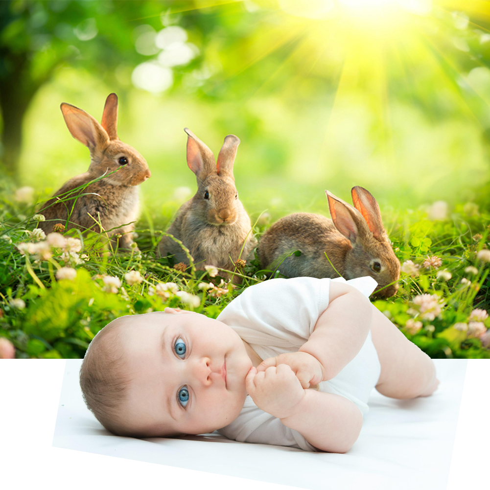 Convenient Easter Rabbit Photo Backdrop Multi-functional Practical Festival Photography Background for Audio Video(China)