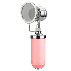 BM-8000 Condenser Microphone, Home Large Vibrating Film Live Broadcast Mai Network K Song Microphone