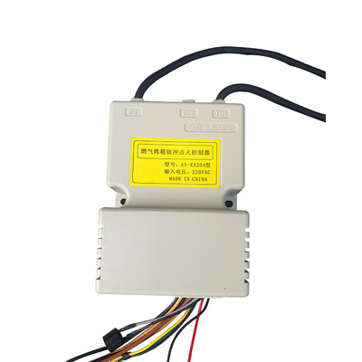 Earth Star Universal Catering Gas Oven Spare Parts 220V Pulse Igniter Ignition System Control