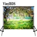 VinylBDS фоны для фотосъемки 10x8ft Живописные фоны для фотосъемки зеленый сказочный лес задний фон для детской фотосъемки