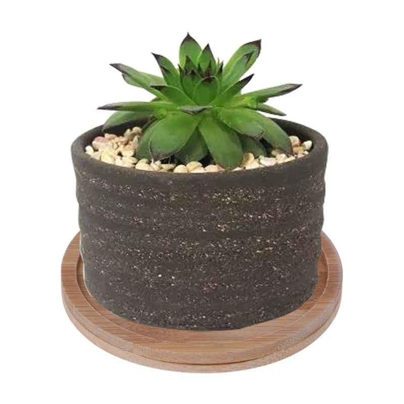 ไม้ไผ่ไม้จานรองพืชถาด MINI Plant ดอกไม้หม้อ Favor Succulent หม้อถาด Simple Elegant Design บ้านระเบียง DECO