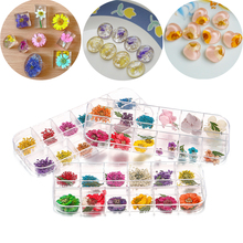 Craft Nail-Art-Decorations Dry-Plants Epoxy-Uv-Resin Jewelry-Making-Accessories Flower