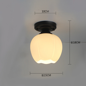 Ceiling light ceiling lamp iron living room lights modern deco salon for dining room hanging led light fixtures surface mounted 15