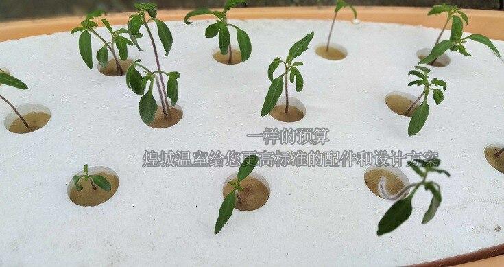 水培种植设备,无土栽培设备,阳台水培设备