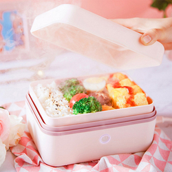 Kbxstart 220V Reheating Electric Lunch Box  Mini Portable Steam Heating Lunch Box with  Ice Box Preservation for Office 300W