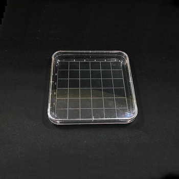 10pcs/lot Disposable 10cmx10cm Plastic Polystyrene Square Petri Dish, culture dish plate for Laboratory analysis фото